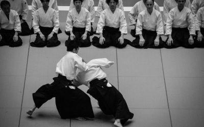 El aikido