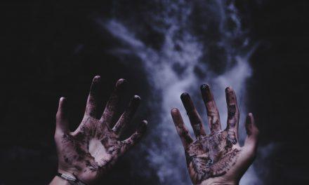 Experiencias: Caída y cenizas