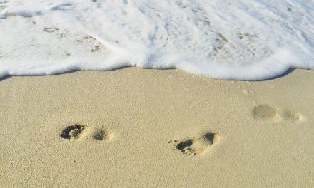 Meditaciones: Caminante, no hay camino