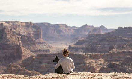 Meditaciones: Después de los derechos humanos