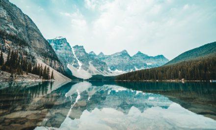 Meditaciones: La locura de todos